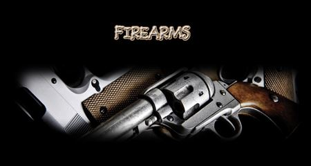 Picture for category Firearms