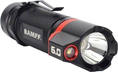 Picture of 600 Lumen Dual LED Flashlight