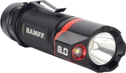 Picture of 800 Lumen Dual LED Flashlight