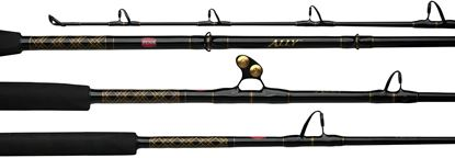 Picture of Ally Boat Rods