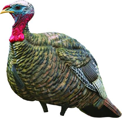 Picture of Avian X LCD Jake Quarter Strut Decoy