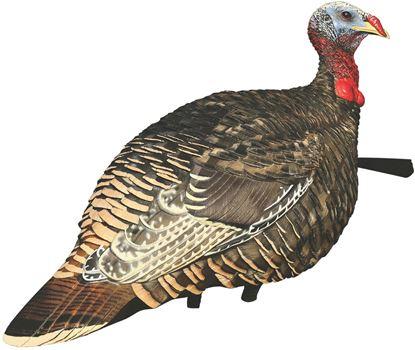 Picture of Avian X Rio Grande Turkey  Decoys
