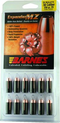 Picture of Barnes Expander MZ