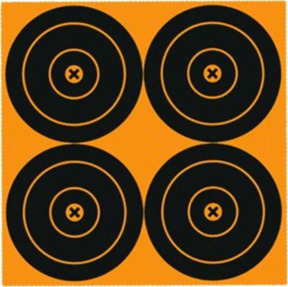 Picture of Big Burst Targets