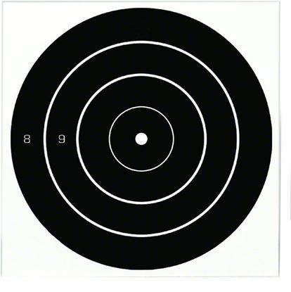 Picture of Birchwood Casey Dirty Bird Bullseye