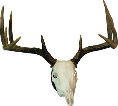 Picture of Hunters Specialties European Skull Deer Mounting Kit
