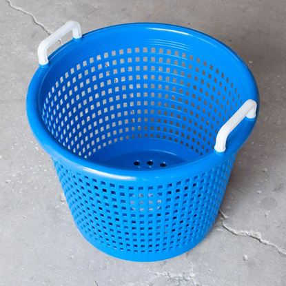 Picture of Joy Fish Fish Basket