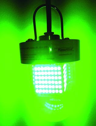 Picture of Keepalive Green Fishing Light