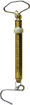 Picture of Brass Fishing Scale