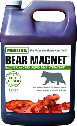 Picture of Bear Magnet Savory Bacon