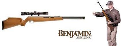 Picture for manufacturer Benjamin