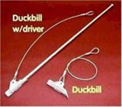Picture of Duckbill Stakes