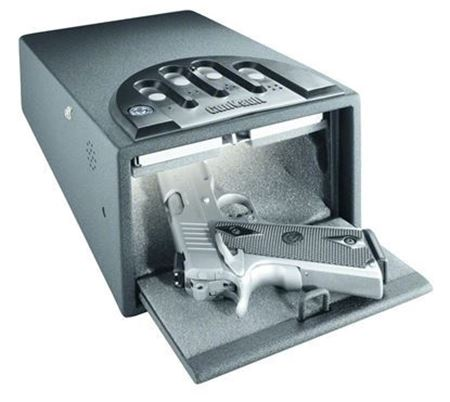 Picture for category Personal Safes Vaults & Accessories