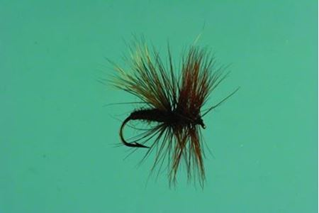 Picture for category Flies & Poppers