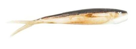 Picture for category Saltwater Plastic Lures