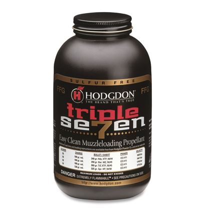 Picture of AA's Hodgdon Triple Seven Pellets