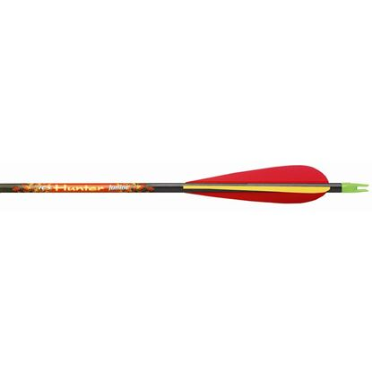 Picture of Beman ICS Hunter Junior Arrows