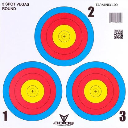Picture of 30-06 Mini Paper Target