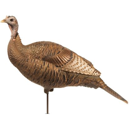 Picture of Dave Smith Decoy Upright Hen