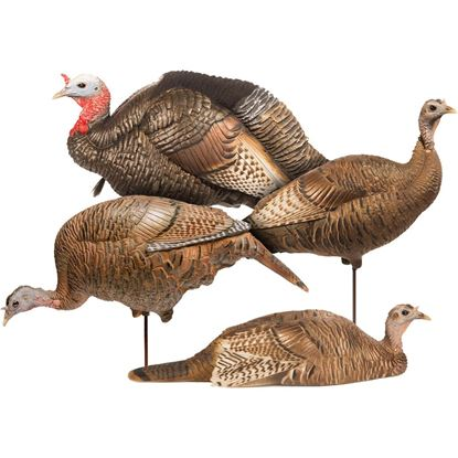 Picture of Dave Smith Decoy Turkey Flock