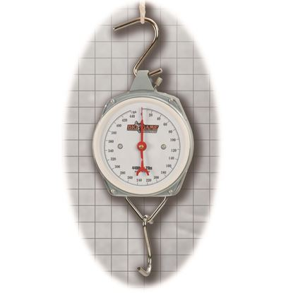 Picture of Muddy Dial Scale