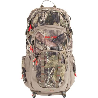 Picture of Allen Arroyo Daypack