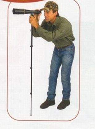 Picture of ALL SHOOTING STICK