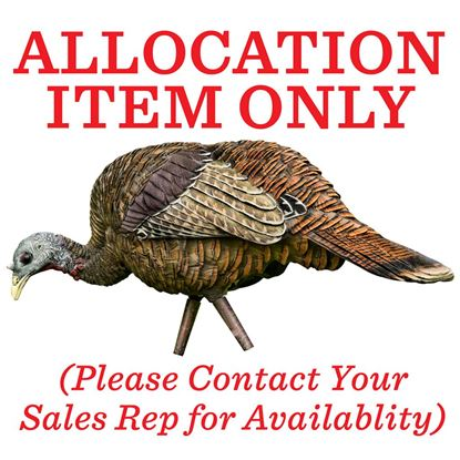 Picture of Avian X Turkey Decoy