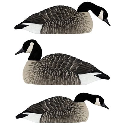Picture of Avian X Honker Shell Decoys