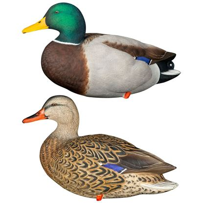 Picture of Avian X Full Body Decoys