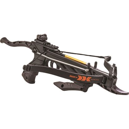 Picture of Bear X Desire Pistol Crossbow