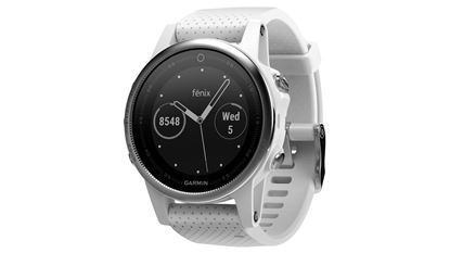 Picture of Garmin Fenix 5S Silver/White