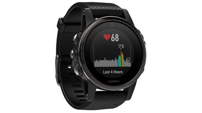 Picture of Garmin Fenix 5S Saphire Black