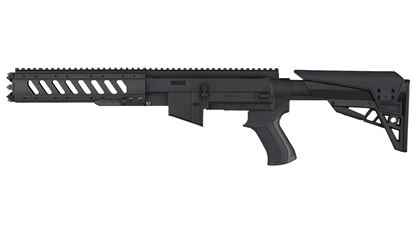 Picture of Advanced Technology R 10/22 AR/22 Takedown