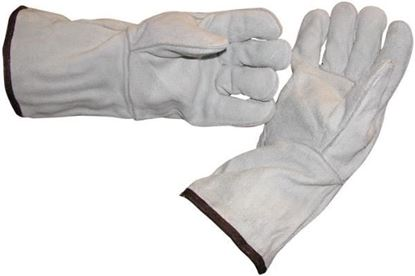 Picture of DRSH GLOVES