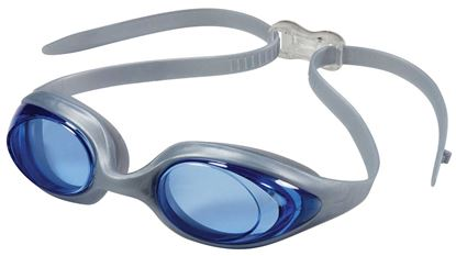 Picture of LEAD GOGGLE CIRCUIT NF BLU/ SIL