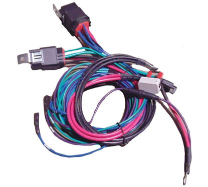 Picture of COOK MAIN WIRE HARNESS