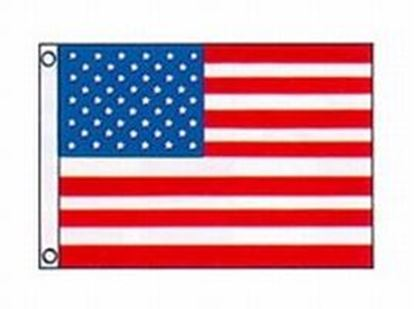 Picture of TAYL FLAG 50STAR 12X18