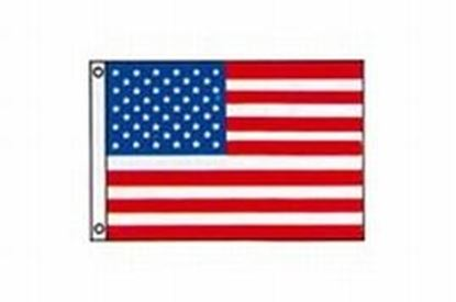 Picture of TAYL FLAG 50STAR 16X24