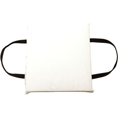 Picture of FTHR CUSHION WHITE