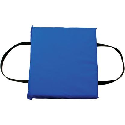 Picture of FTHR CUSHION BLUE