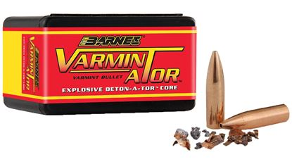 Picture of Barnes 22 Cal 40GR HP FB