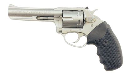 """Picture of Charter Arms Pathfinder 22LR 4.2"""" 6 Rd"""