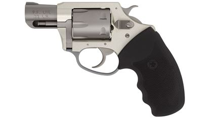 """Picture of Charter Arms Pathfinder Lite 22LR 2"""""""