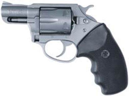 Picture of Charter Arms Pathfinder 22WMR 2 In