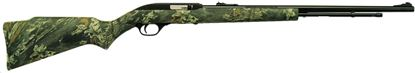Picture of Marlin Model 60C