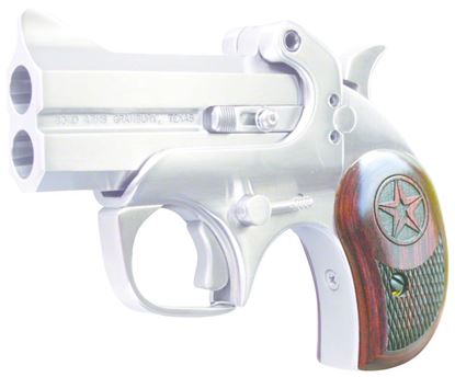 Picture of Bond Arms Texas Defender