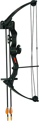 Picture of Bear Archery AYS300BR Brave Black w/Biscuit Youth Bow