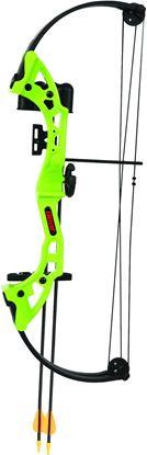 "Picture of Bear Archery AYS300GR Brave RH Flo Green 13.5-19"" draw 15-25#"
