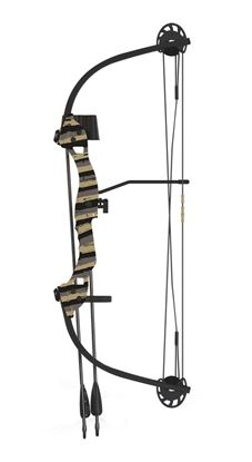 Picture of Barnett Tomcat 2 Compound Bow